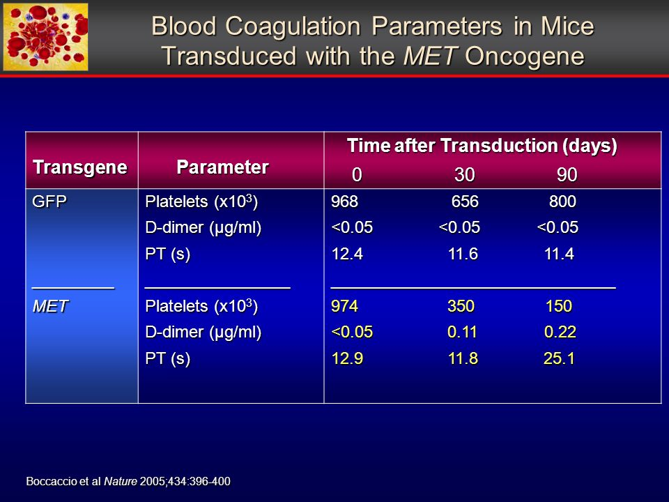 Blood Coagulation Parameters in Mice Transduced with the MET Oncogene Transgene Parameter Parameter Time after Transduction (days) Time after Transduction (days) GFP_________MET Platelets (x10 3 ) D-dimer (µg/ml) PT (s) ________________ Platelets (x10 3 ) D-dimer (µg/ml) PT (s) <0.05 <0.05 < _______________________________ < Boccaccio et al Nature 2005;434: