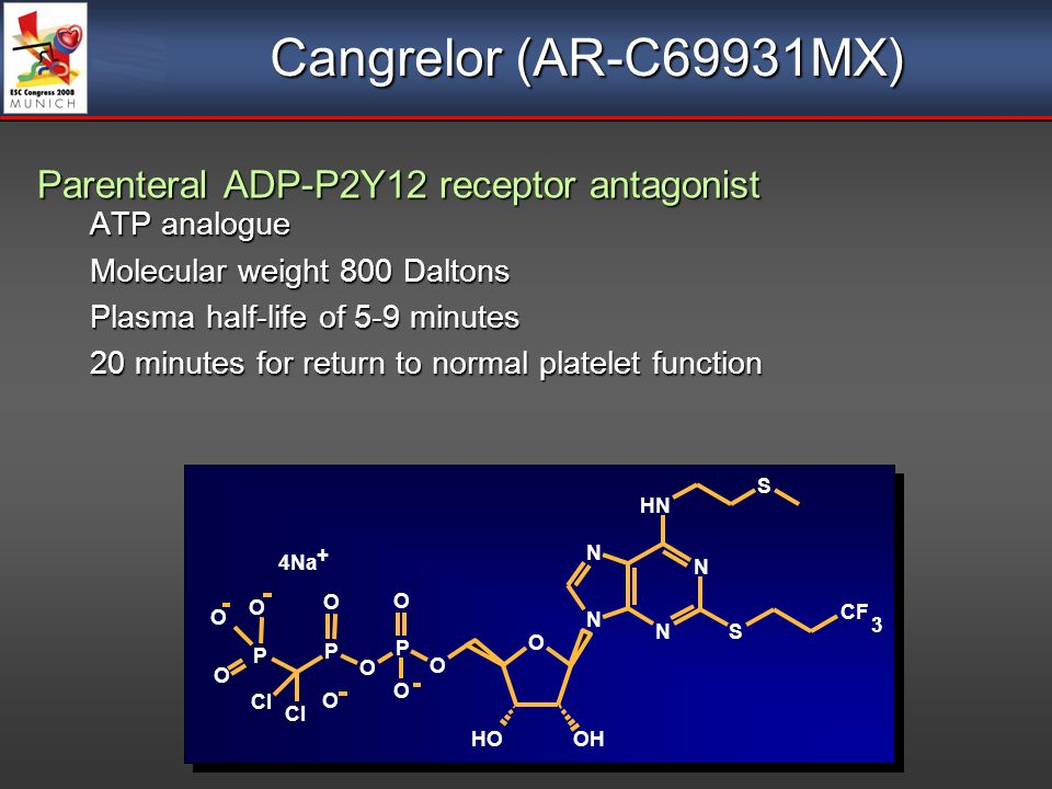 Cangrelor (AR-C69931MX) Parenteral ADP-P2Y12 receptor antagonist ATP analogue Molecular weight 800 Daltons Plasma half-life of 5-9 minutes 20 minutes for return to normal platelet function Parenteral ADP-P2Y12 receptor antagonist ATP analogue Molecular weight 800 Daltons Plasma half-life of 5-9 minutes 20 minutes for return to normal platelet function N N N N NH S CF 3 OH OH O O P O O P P O O O Cl O O O S 4Na +