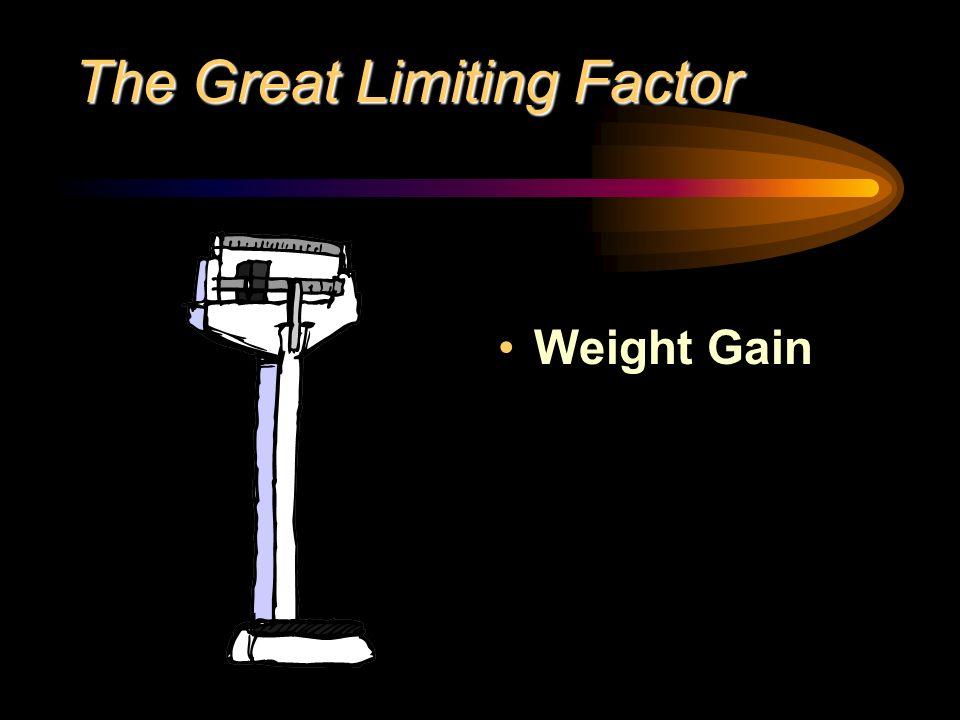 The Great Limiting Factor Weight Gain