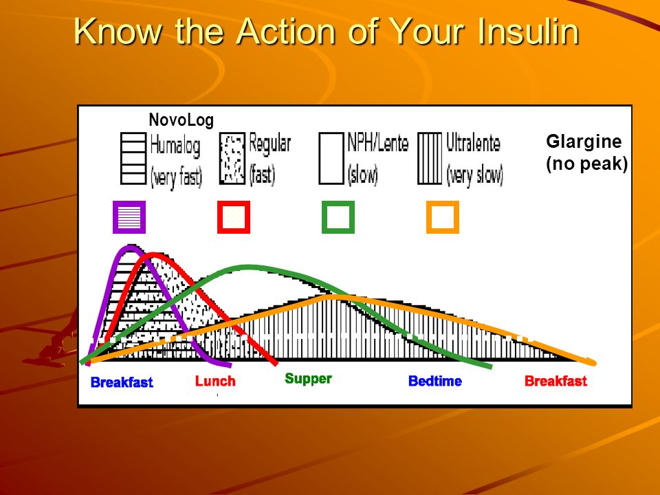Know the Action of Your Insulin Glargine (no peak) NovoLog