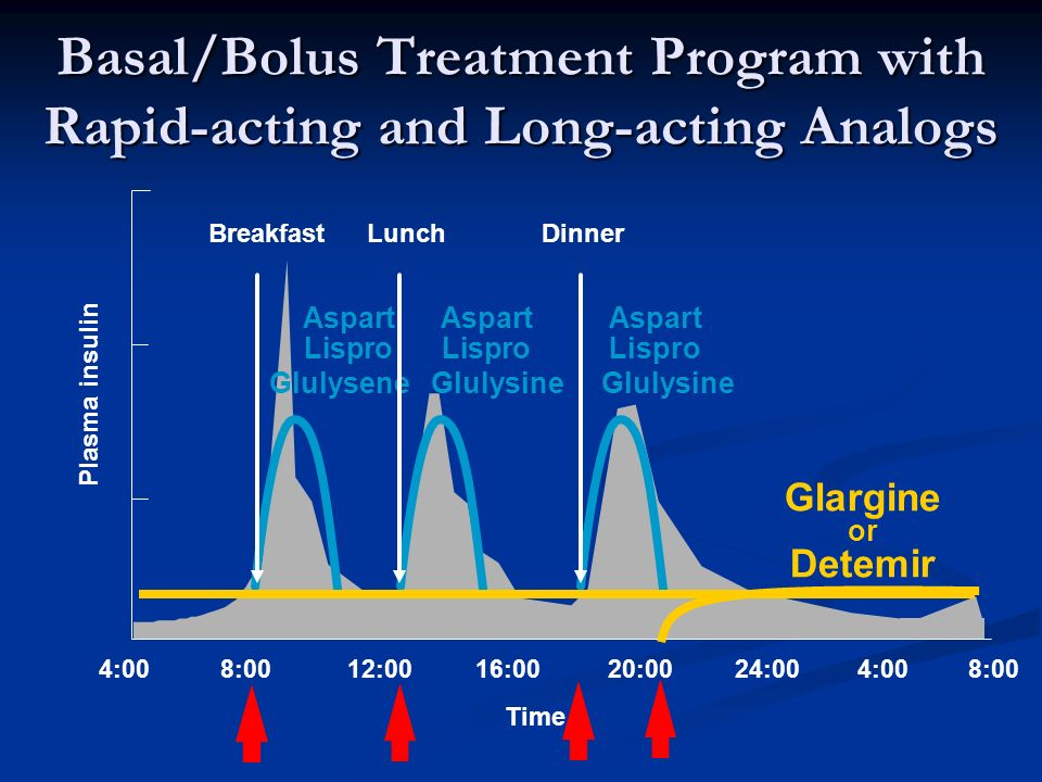 4:0016:0020:0024:004:00 BreakfastLunchDinner 8:00 12:008:00 Time Glargine or Detemir Plasma insulin Basal/Bolus Treatment Program with Rapid-acting and Long-acting Analogs LisproLisproLispro Glulysene Glulysine Glulysine AspartAspartAspart