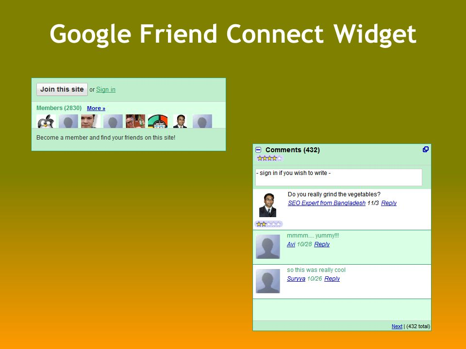 Google Friend Connect Widget