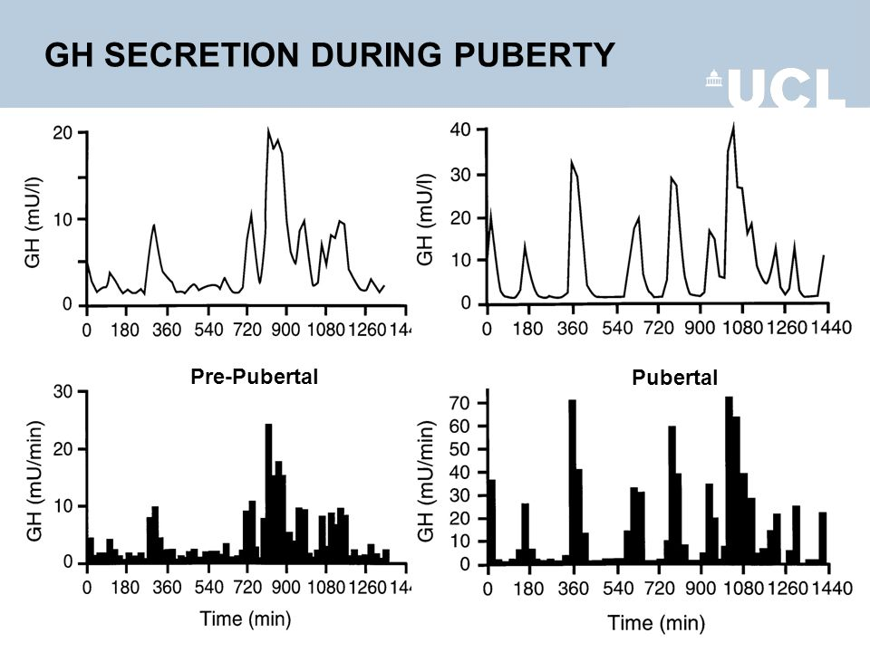 GH SECRETION DURING PUBERTY Pre-Pubertal Pubertal