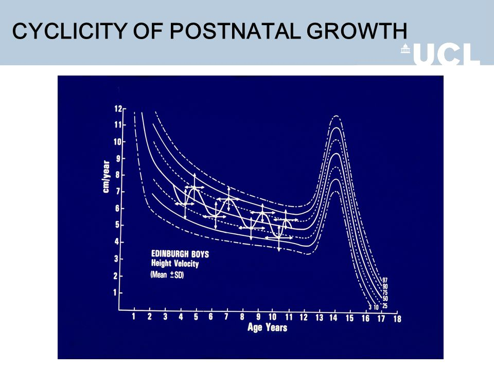 CYCLICITY OF POSTNATAL GROWTH