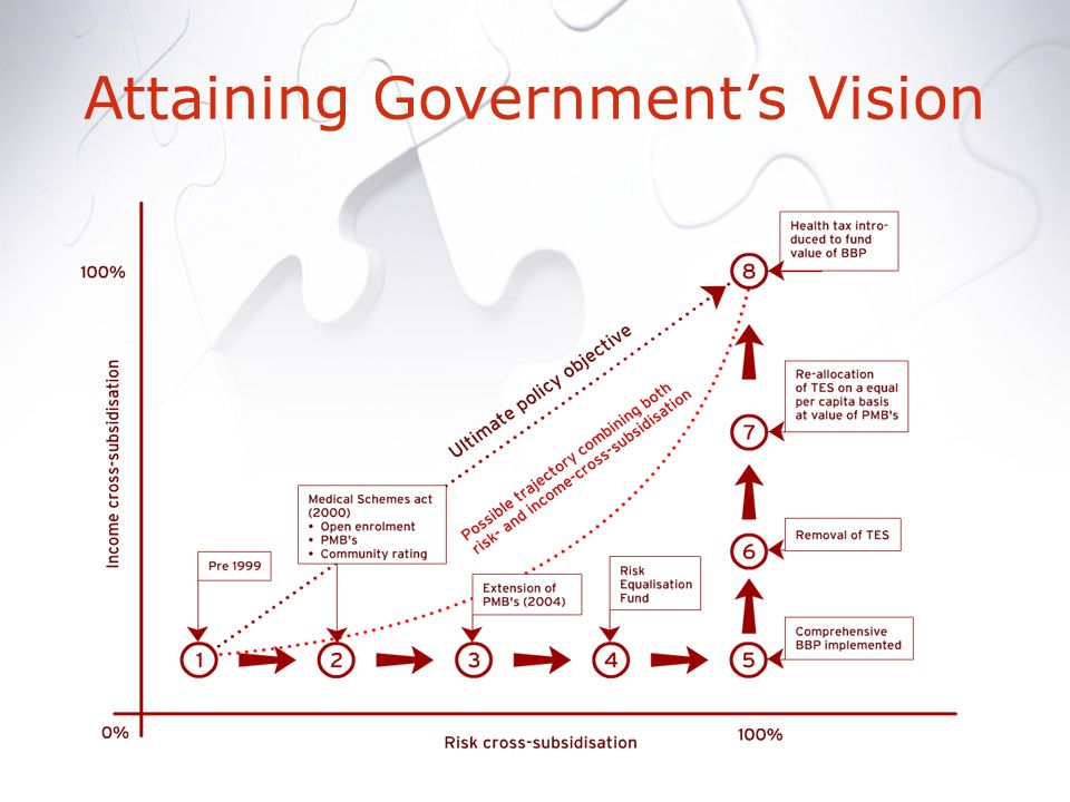 Attaining Governments Vision