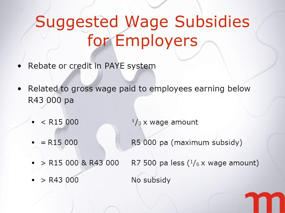 Suggested Wage Subsidies for Employers Rebate or credit in PAYE system Related to gross wage paid to employees earning below R pa < R / 3 x wage amount = R15 000R5 000 pa (maximum subsidy) > R & R43 000R7 500 pa less ( 1 / 6 x wage amount) > R43 000No subsidy