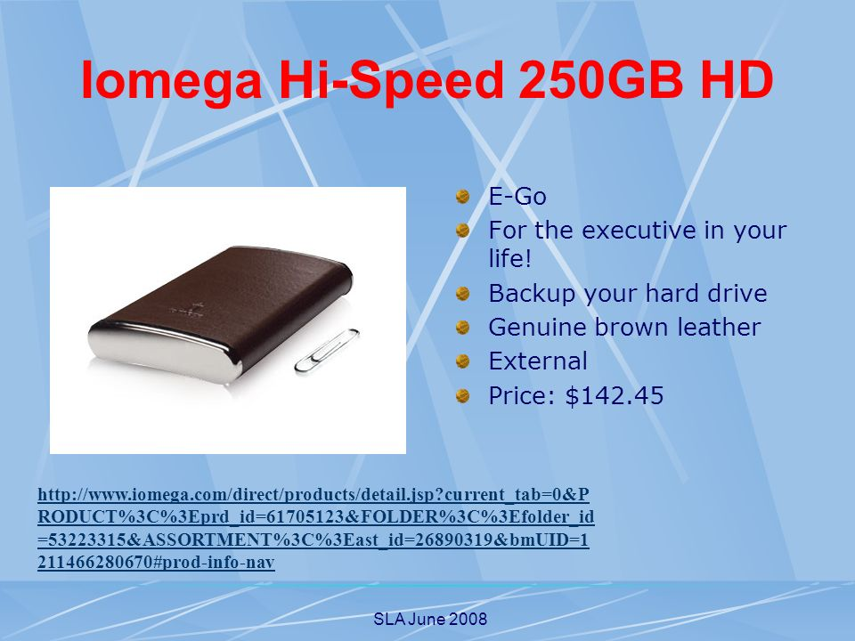SLA June 2008 Iomega Hi-Speed 250GB HD E-Go For the executive in your life.