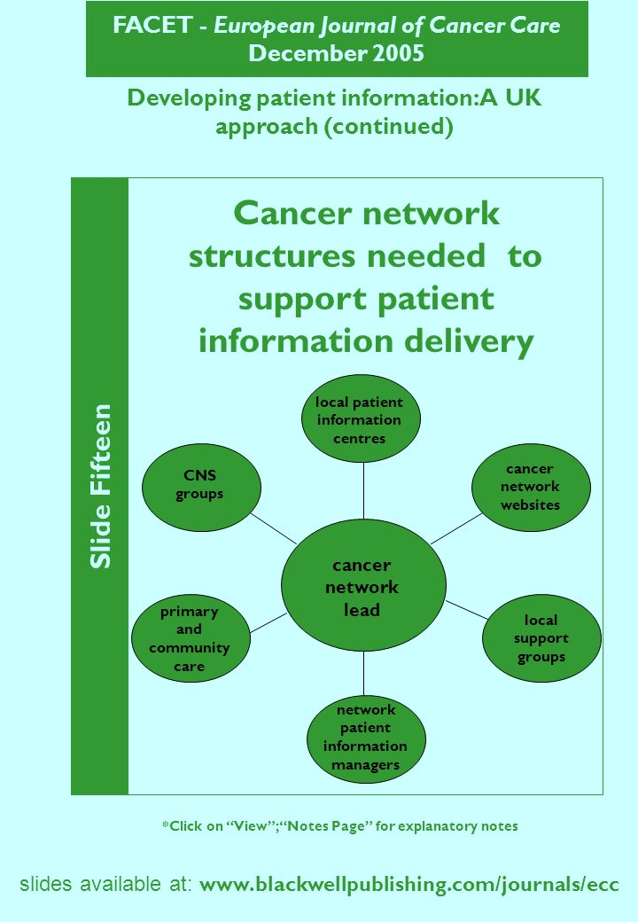 FACET - European Journal of Cancer Care December 2005 slides available at:   Slide Fifteen *Click on View; Notes Page for explanatory notes Developing patient information: A UK approach (continued) Cancer network structures needed to support patient information delivery cancer network lead local patient information centres cancer network websites local support groups network patient information managers primary and community care CNS groups