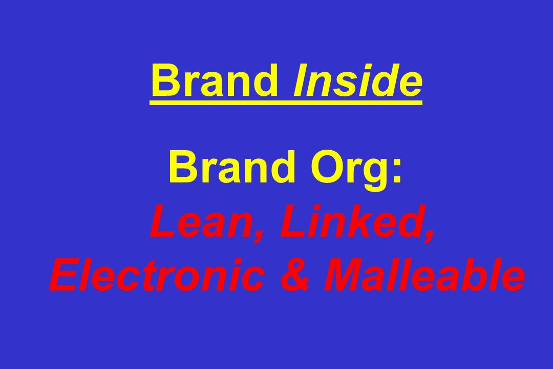 Brand Inside Brand Org: Lean, Linked, Electronic & Malleable