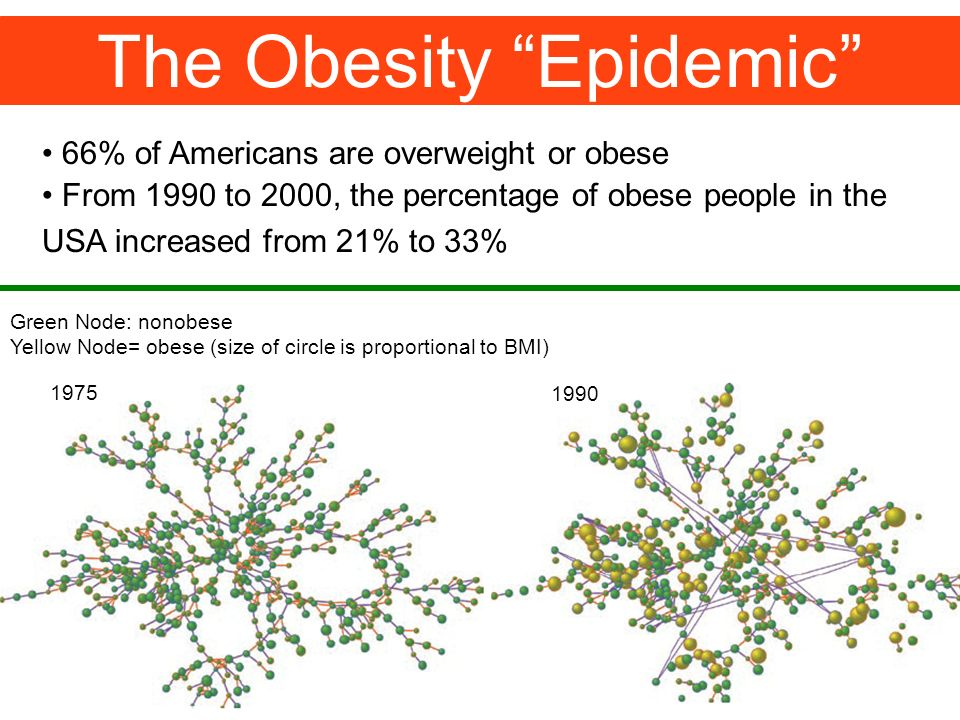 The Obesity Epidemic 66% of Americans are overweight or obese From 1990 to 2000, the percentage of obese people in the USA increased from 21% to 33% Green Node: nonobese Yellow Node= obese (size of circle is proportional to BMI)