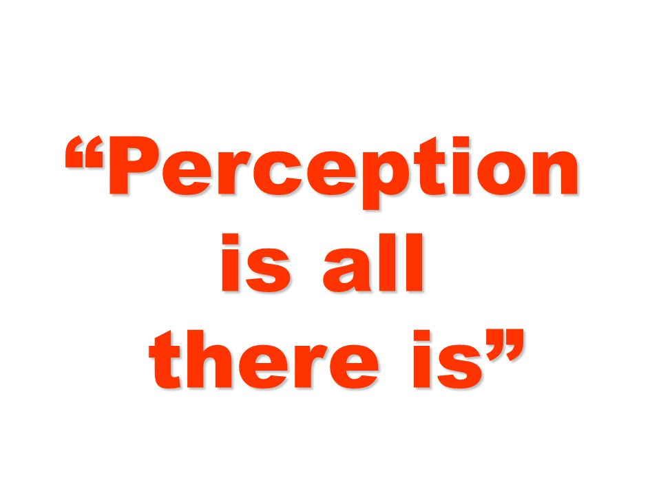 Perception is all there is there is