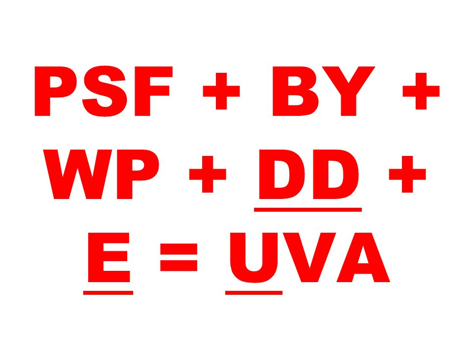 PSF + BY + WP + DD + E = UVA