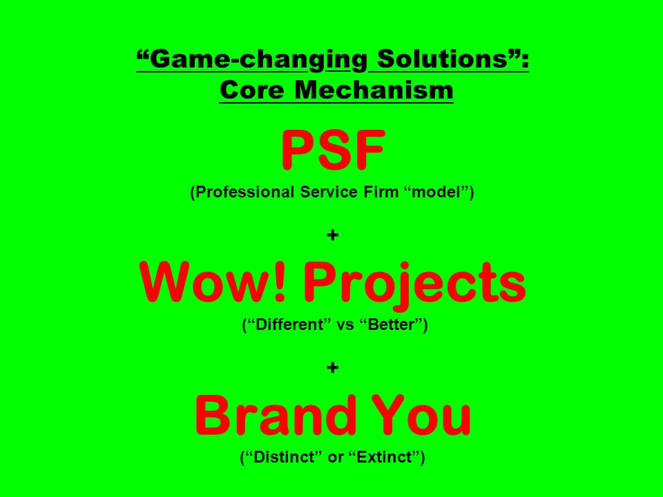 Game-changing Solutions: Core Mechanism PSF (Professional Service Firm model) + Wow.