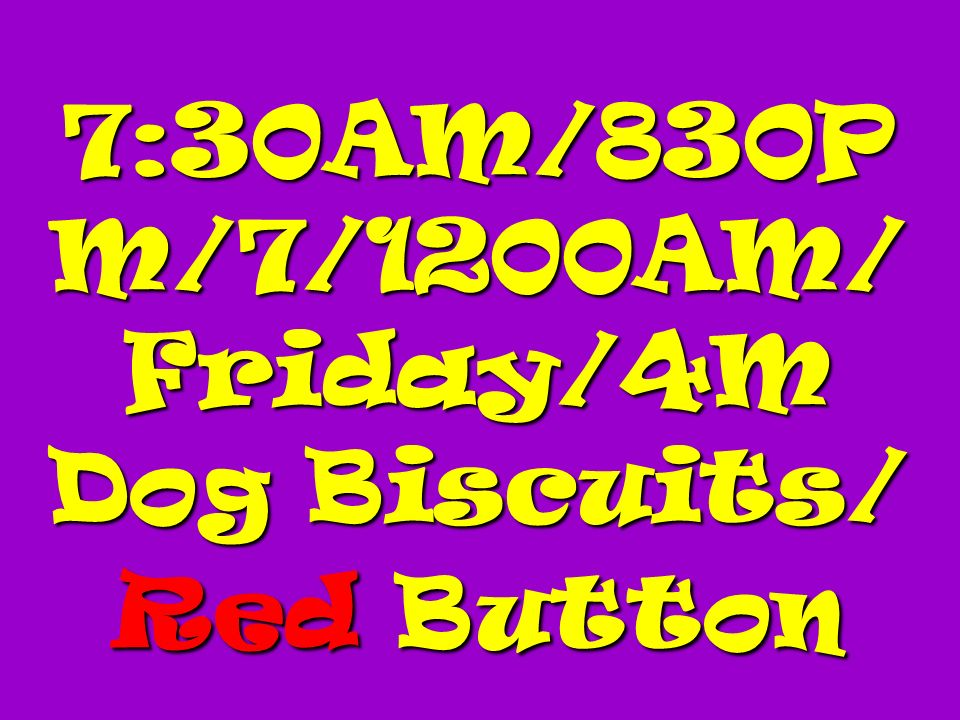 7:30AM/830P M/7/1200AM/ Friday/4M Dog Biscuits/ Red Button 7:30AM/830P M/7/1200AM/ Friday/4M Dog Biscuits/ Red Button