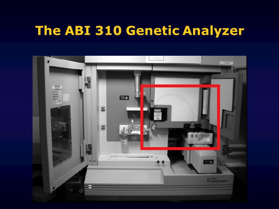The ABI 310 Genetic Analyzer