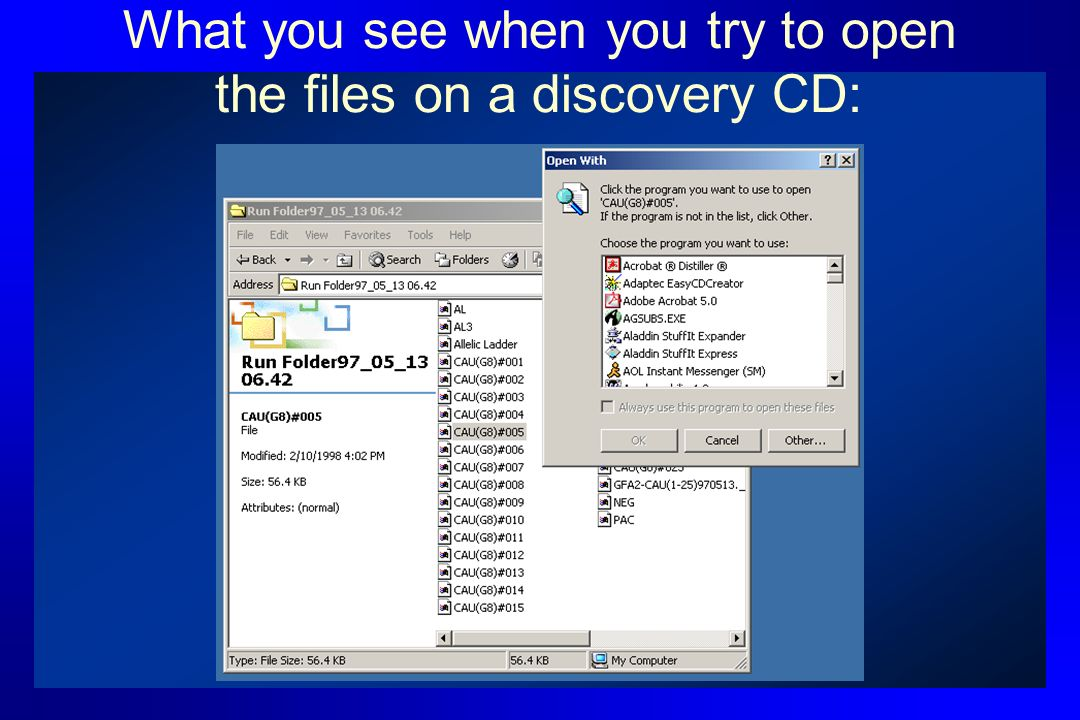 What you see when you try to open the files on a discovery CD: