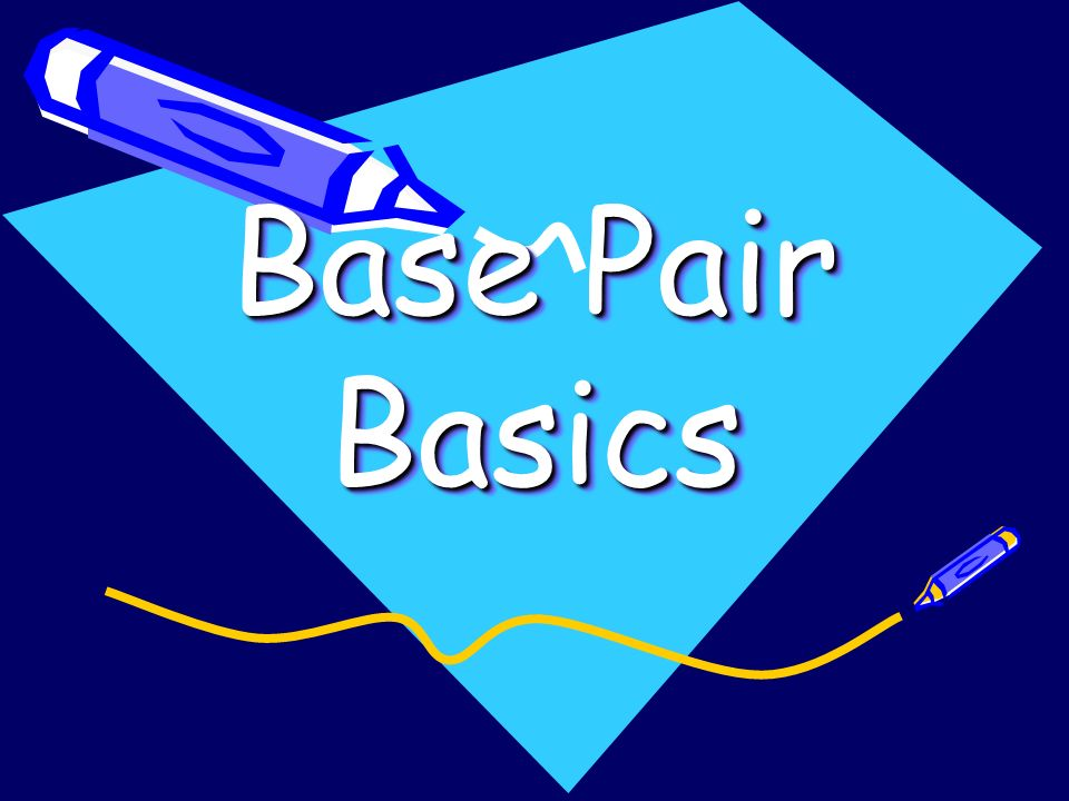 Base Pair Basics Gene Pool Basics Biology Basics Understanding the numbers Evidence collection Discerning ultimate meaning