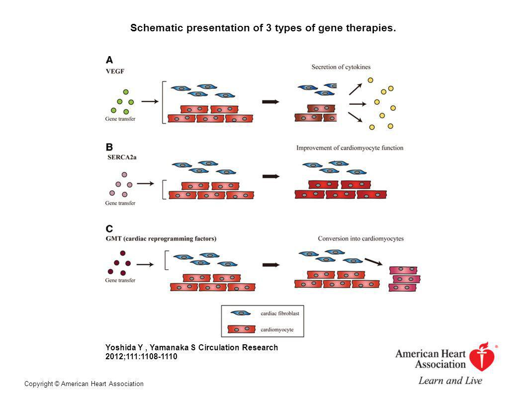Schematic presentation of 3 types of gene therapies.
