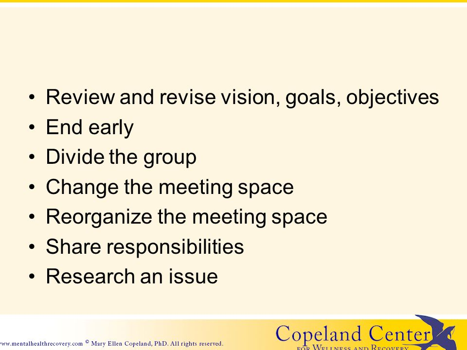 Review and revise vision, goals, objectives End early Divide the group Change the meeting space Reorganize the meeting space Share responsibilities Research an issue