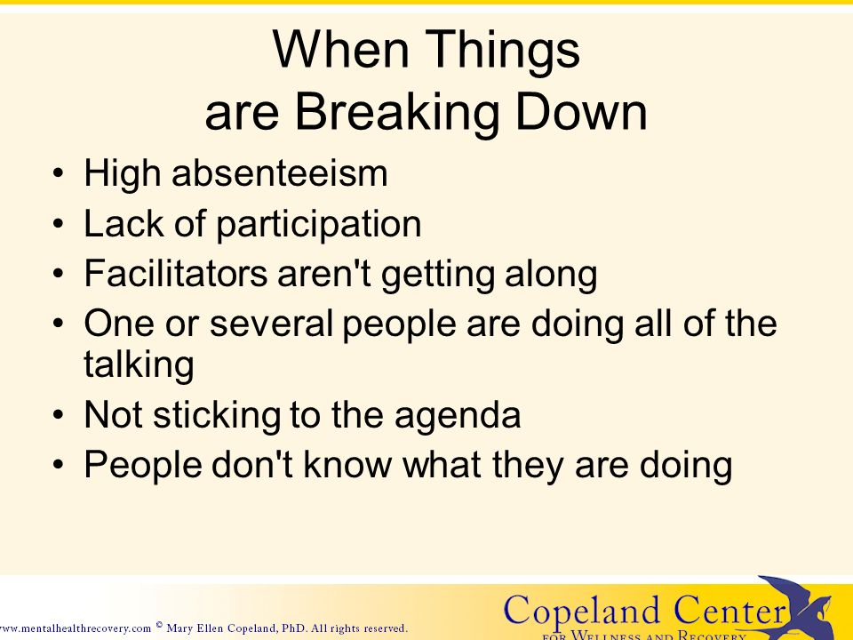When Things are Breaking Down High absenteeism Lack of participation Facilitators aren t getting along One or several people are doing all of the talking Not sticking to the agenda People don t know what they are doing