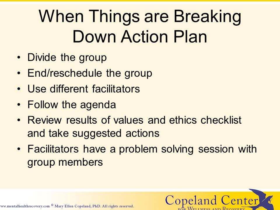 When Things are Breaking Down Action Plan Divide the group End/reschedule the group Use different facilitators Follow the agenda Review results of values and ethics checklist and take suggested actions Facilitators have a problem solving session with group members