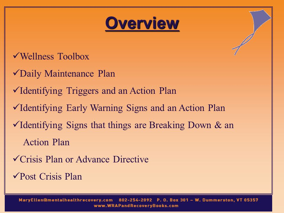 Overview Wellness Toolbox Daily Maintenance Plan Identifying Triggers and an Action Plan Identifying Early Warning Signs and an Action Plan Identifying Signs that things are Breaking Down & an Action Plan Crisis Plan or Advance Directive Post Crisis Plan