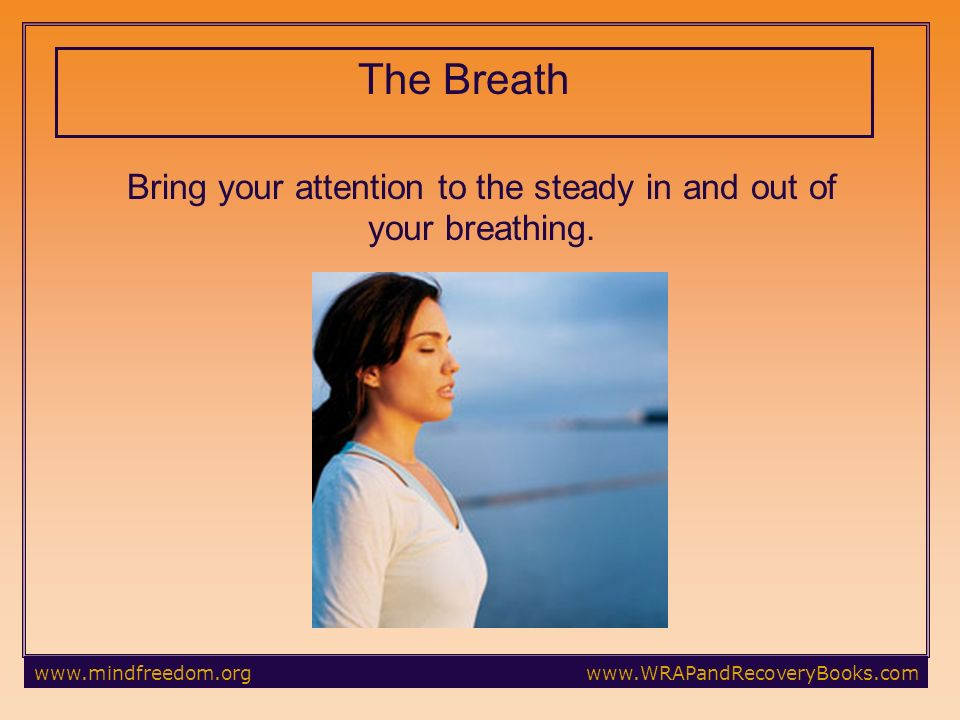 The Breath Bring your attention to the steady in and out of your breathing.