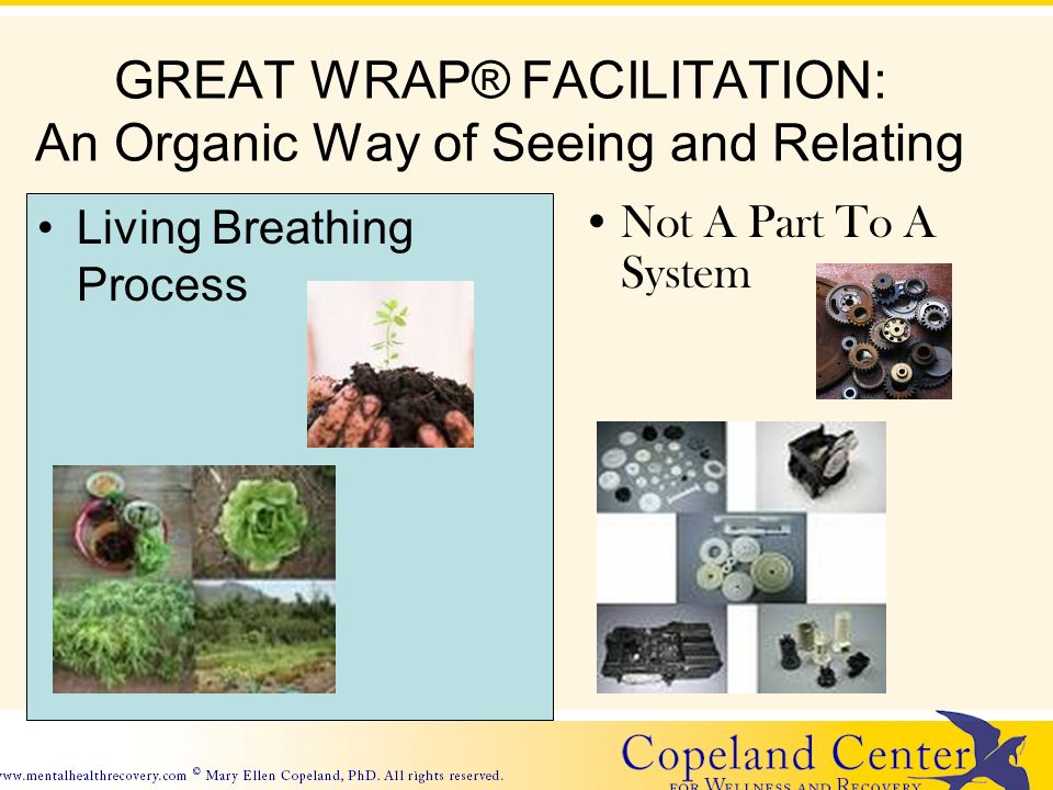 GREAT WRAP® FACILITATION: An Organic Way of Seeing and Relating Living Breathing Process Not A Part To A System