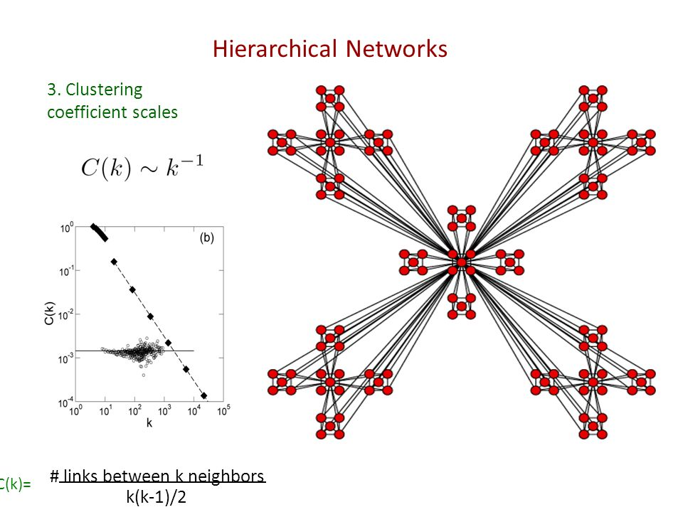 Hierarchical Networks 3. Clustering coefficient scales C(k)= # links between k neighbors k(k-1)/2