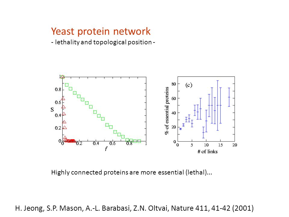 Yeast protein network - lethality and topological position - Highly connected proteins are more essential (lethal)...