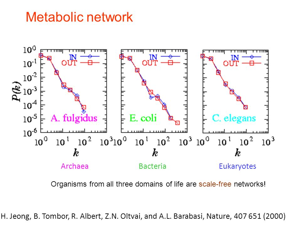 Metabolic network Organisms from all three domains of life are scale-free networks.
