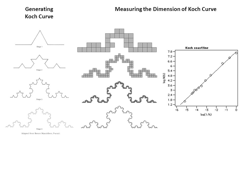 Generating Koch Curve Measuring the Dimension of Koch Curve