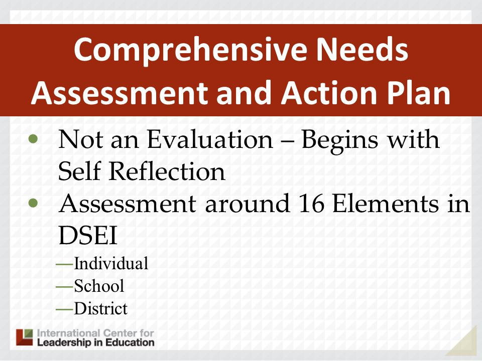 Not an Evaluation – Begins with Self Reflection Assessment around 16 Elements in DSEI Individual School District Comprehensive Needs Assessment and Action Plan