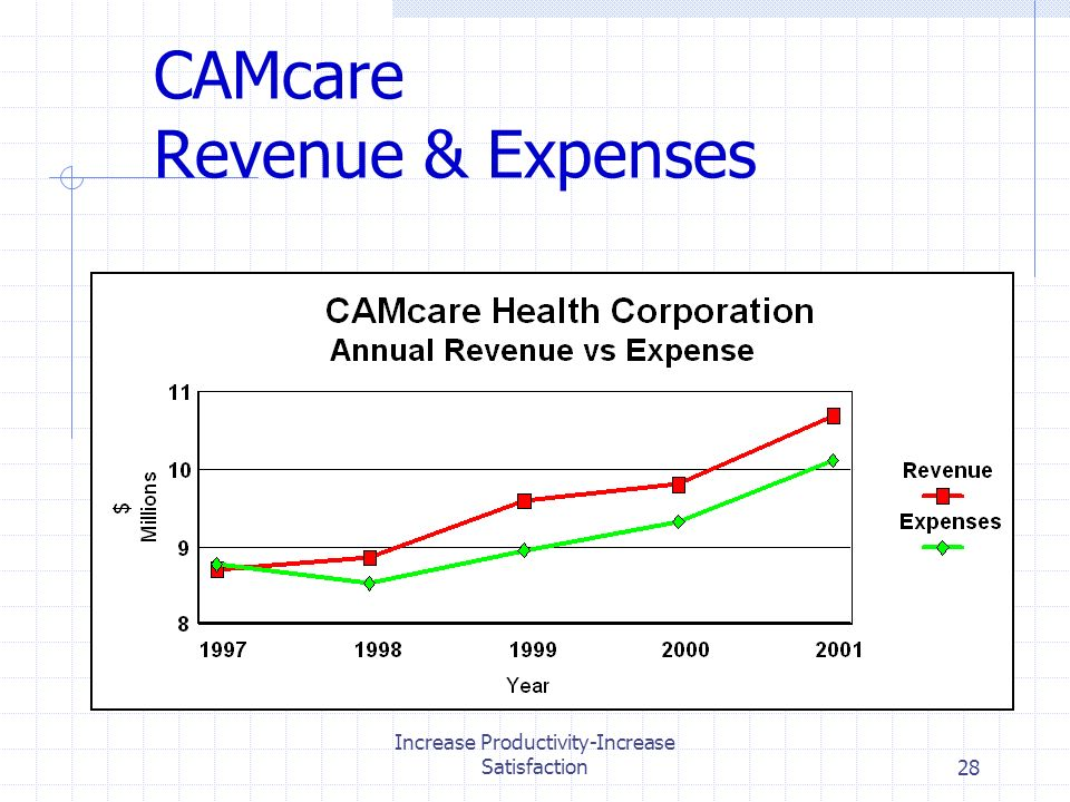 Increase Productivity-Increase Satisfaction28 CAMcare Revenue & Expenses