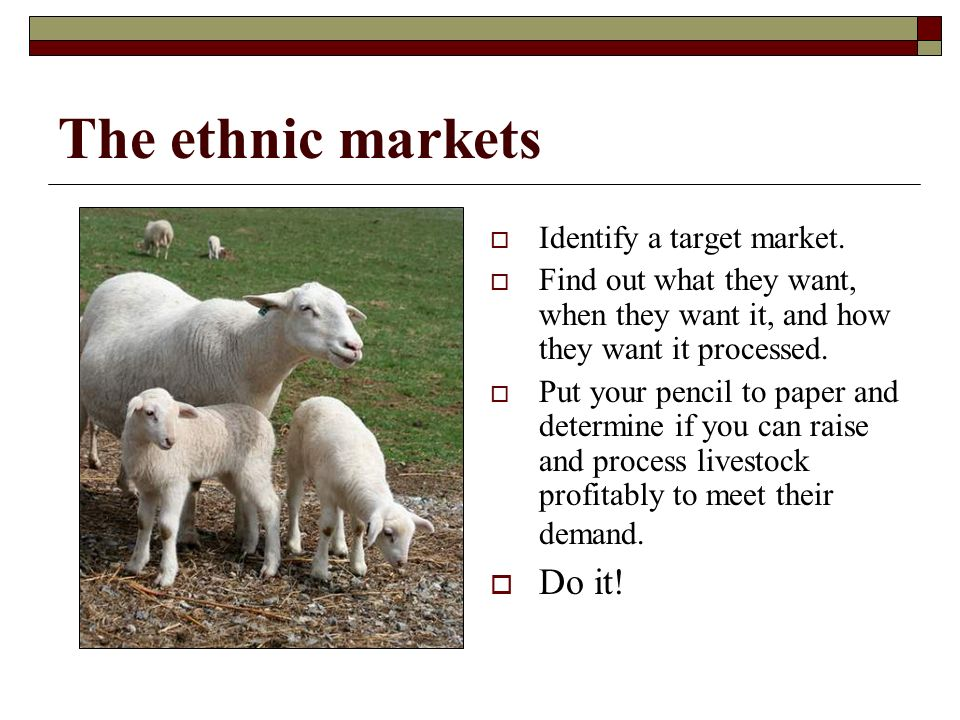 The ethnic markets Identify a target market.