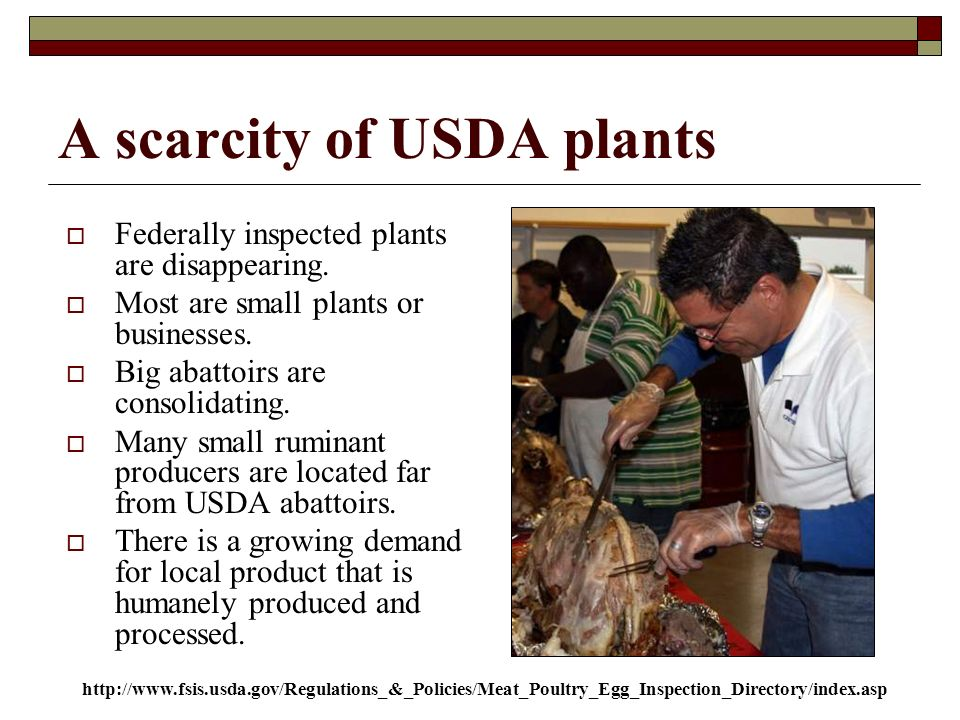 A scarcity of USDA plants Federally inspected plants are disappearing.