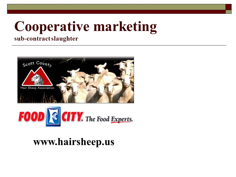 Cooperative marketing sub-contract slaughter