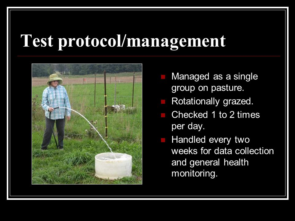 Test protocol/management Managed as a single group on pasture.