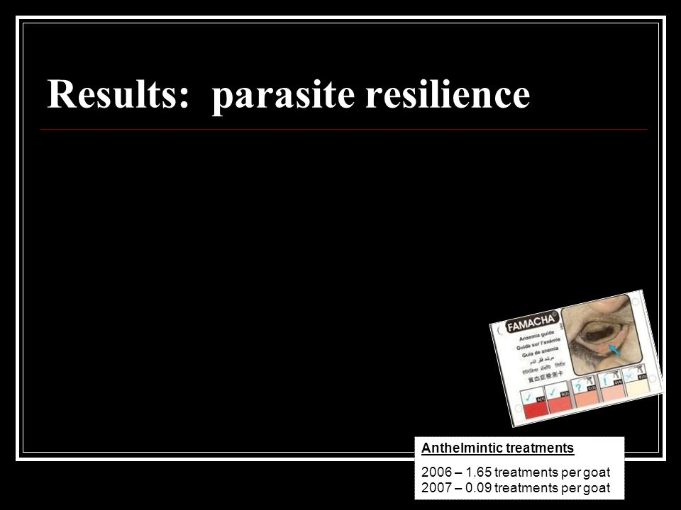 Results: parasite resilience Anthelmintic treatments 2006 – 1.65 treatments per goat 2007 – 0.09 treatments per goat