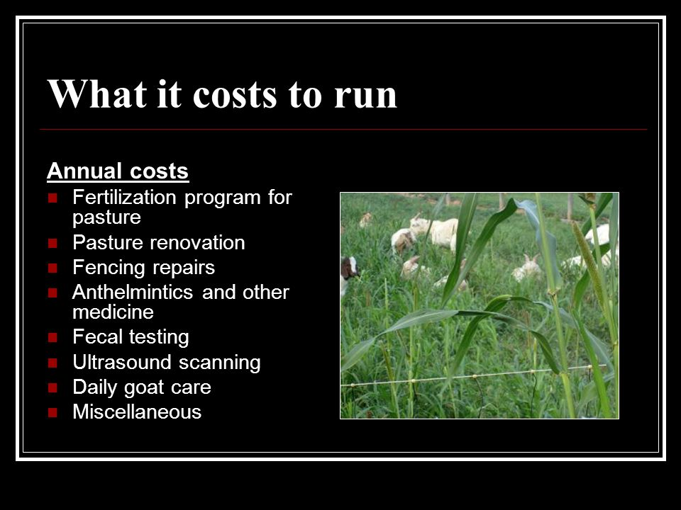What it costs to run Annual costs Fertilization program for pasture Pasture renovation Fencing repairs Anthelmintics and other medicine Fecal testing Ultrasound scanning Daily goat care Miscellaneous