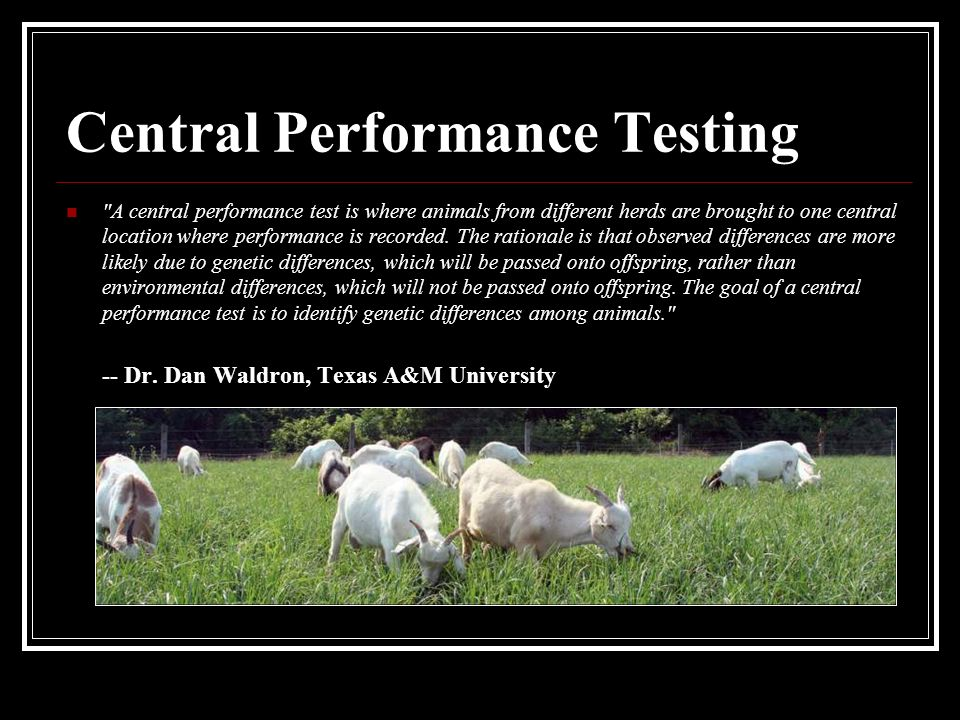 Central Performance Testing A central performance test is where animals from different herds are brought to one central location where performance is recorded.