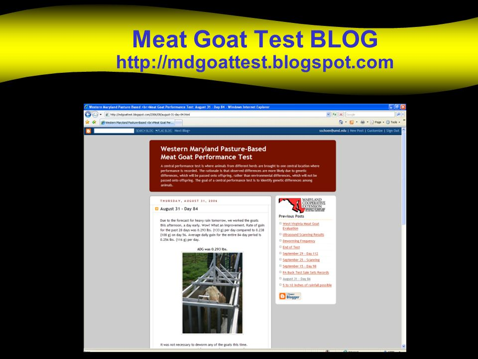 Meat Goat Test BLOG