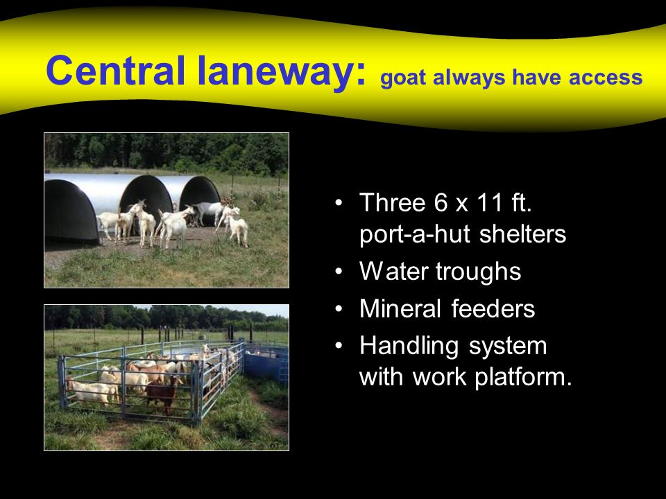 Central laneway: goat always have access Three 6 x 11 ft.