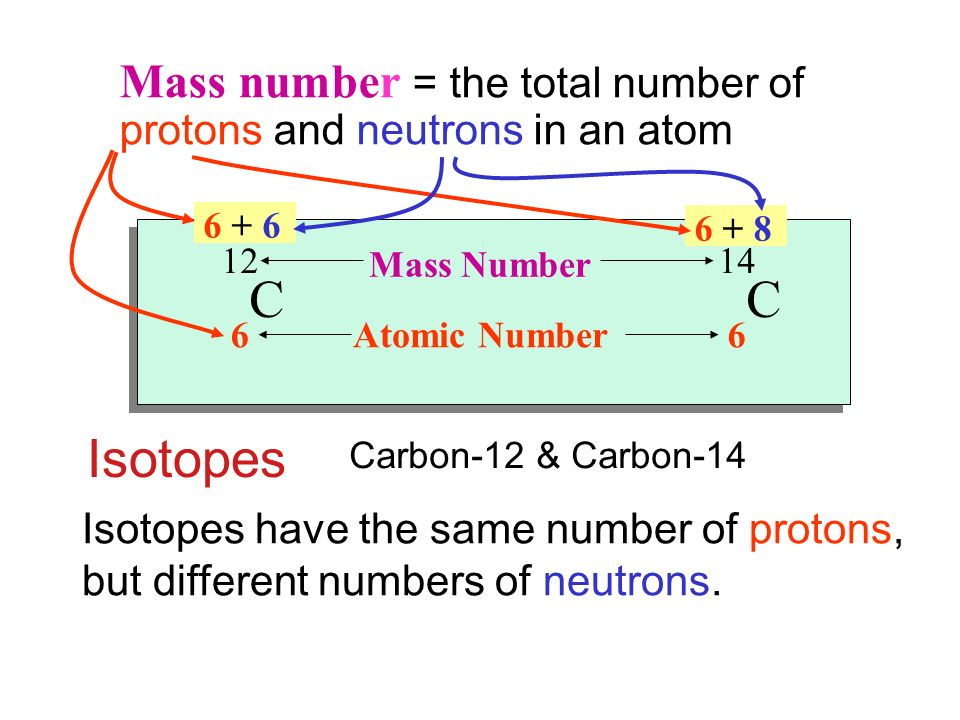 Isotopes Mass number = the total number of protons and neutrons in an atom Isotopes have the same number of protons, but different numbers of neutrons.
