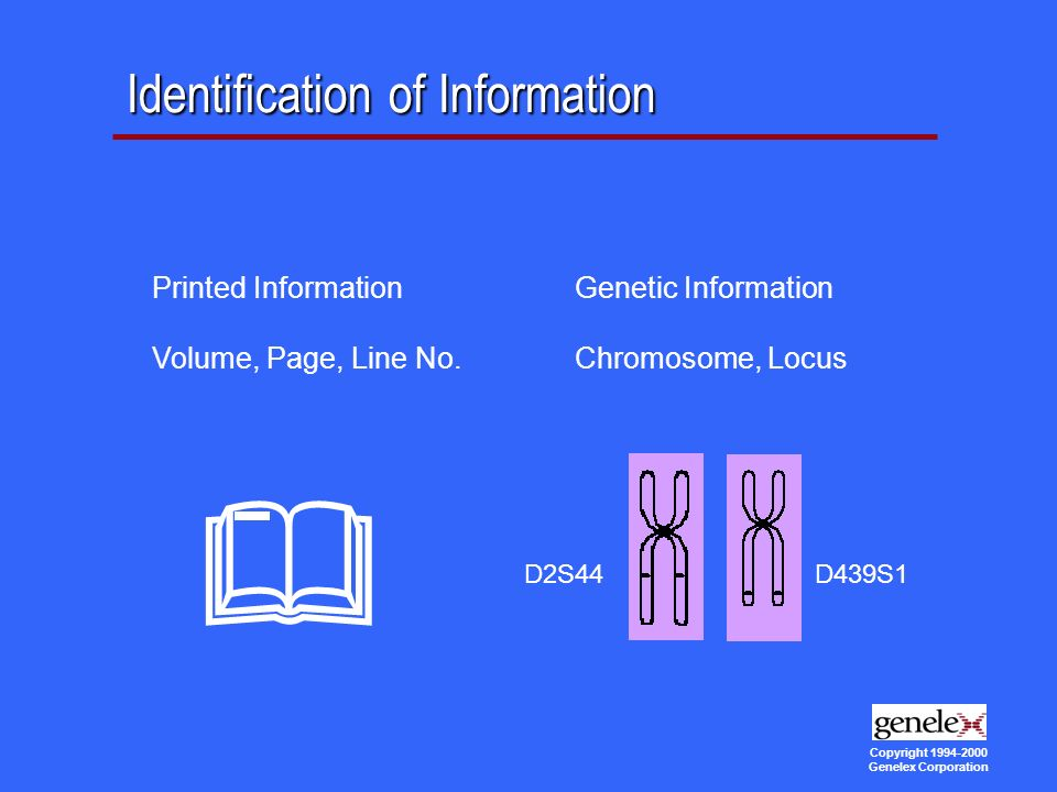 Copyright Genelex Corporation Identification of Information Printed Information Volume, Page, Line No.