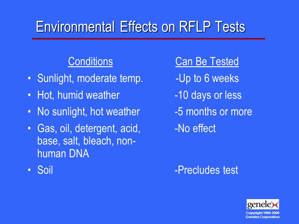 Copyright Genelex Corporation Environmental Effects on RFLP Tests Conditions Sunlight, moderate temp.