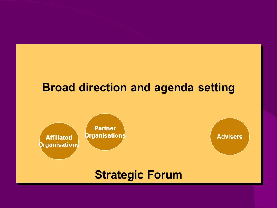 Strategic Forum Partner Organisations Affiliated Organisations Advisers Broad direction and agenda setting
