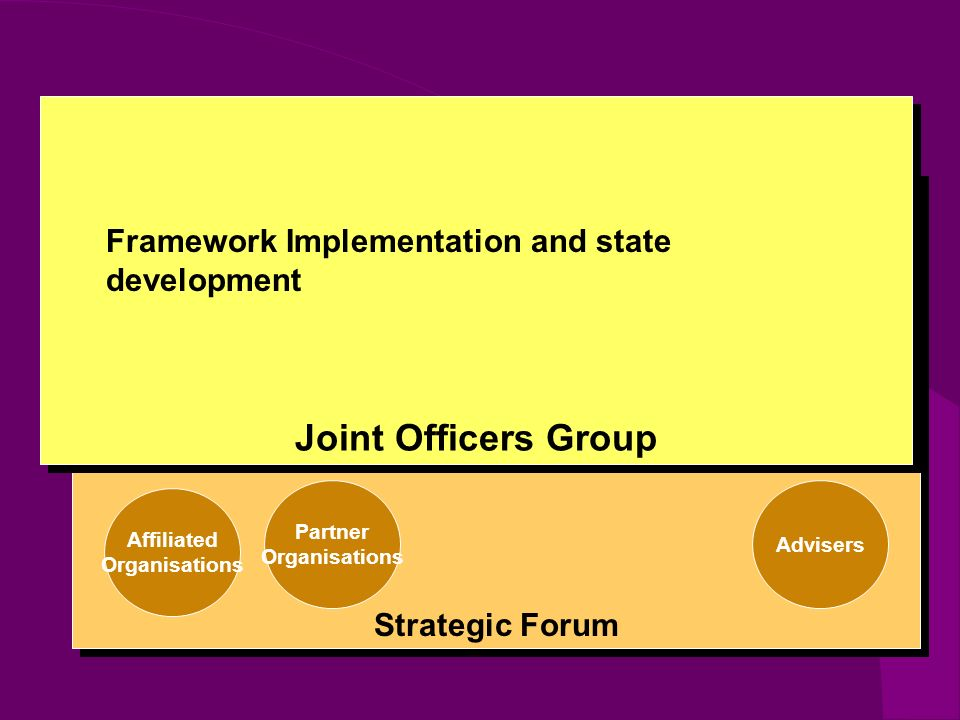 Strategic Forum Partner Organisations Affiliated Organisations Advisers Joint Officers Group Framework Implementation and state development