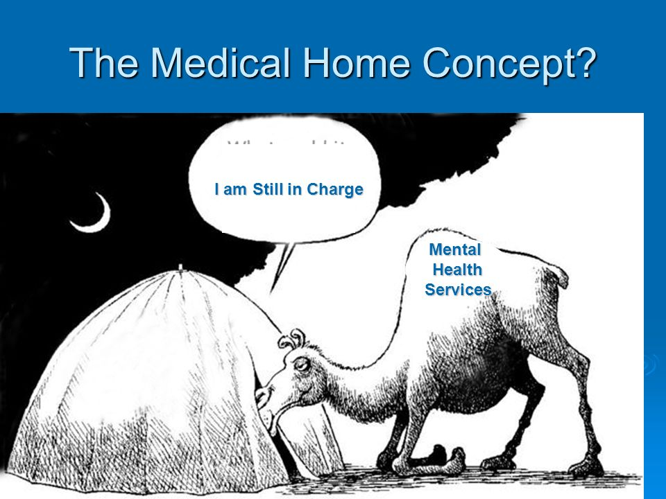 30 The Medical Home Concept I am Still in Charge MentalHealthServices