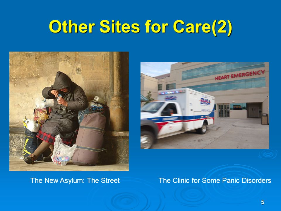 5 Other Sites for Care(2) The New Asylum: The Street The Clinic for Some Panic Disorders